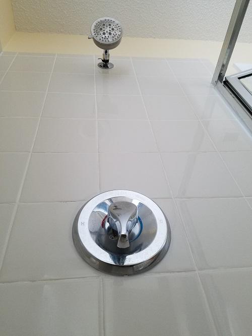 Shower_Faucet