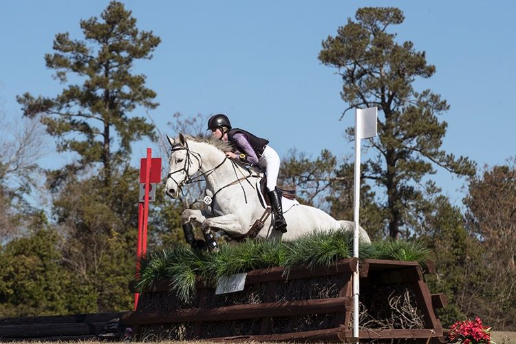 pic29_white_horse_jumps
