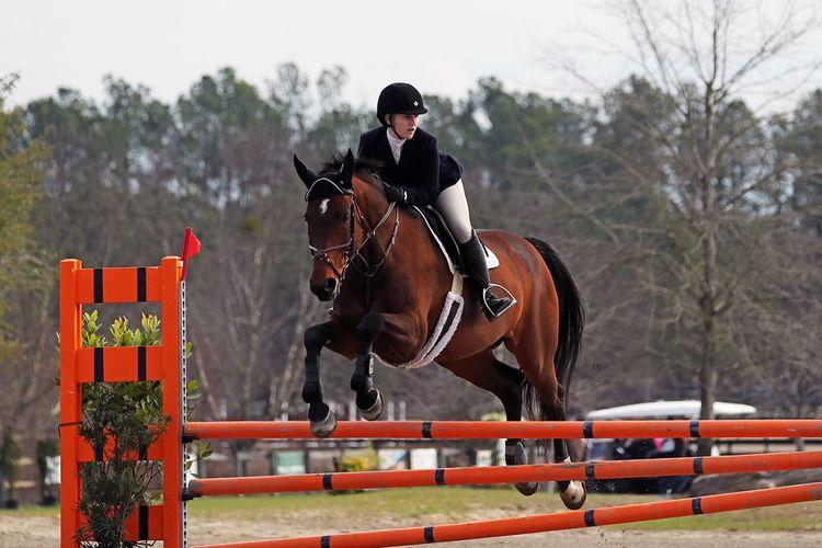 pic6_horse_jump_2