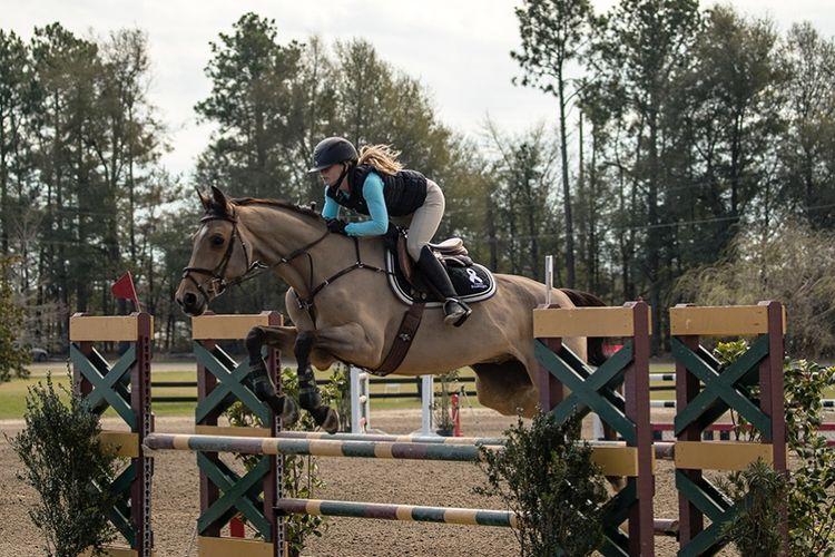 pic7_horse_jump_3 - Copy