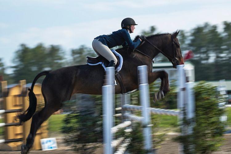 pic9_horse_jump_champion