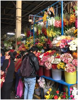 Market_in_Cusco